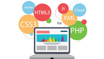 Web Development Module